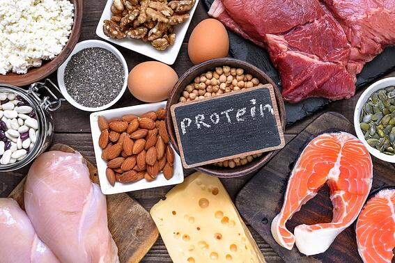 bariatric-protein-blog